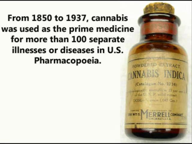 canabis sativa the miracle drug Cannabis connection: is cbd a miracle drug or just snake oil get app video video get app best of netflix, hulu & more  a cannabis sativa constituent, as an antipsychotic drug .